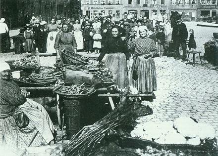 Verkauf von Bamberger Gärtnerprodukten, u.a. Süßholz auf dem Maxplatz 1902